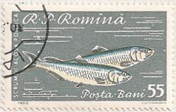 Rumania 2799 i87