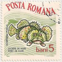Rumania 3146 i87