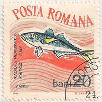 Rumania 3148 i87