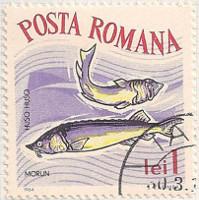Rumania 3152 i87