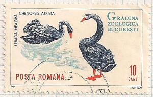 Rumania 3198 i97