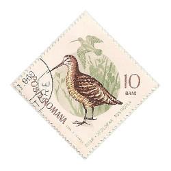 Rumania 3304 i97