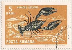 Rumania 3412 i87