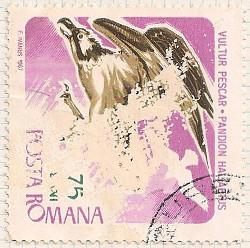 Rumania 3446 i97