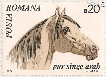 Rumania 3768 i105