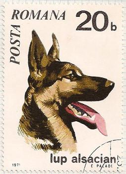 Rumania 3788 i105
