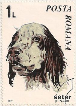 Rumania 3791 i105