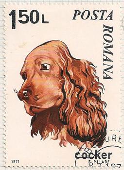 Rumania 3792 i105