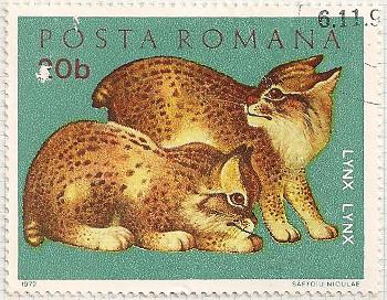 Rumania 3885 i105
