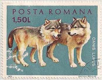 Rumania 3889 i105