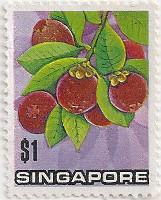 Singapore-221-AE49