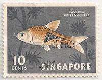 Singapore-69-AE45