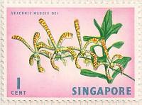 Singapore 63 i50