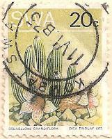 SWA-252-AN156