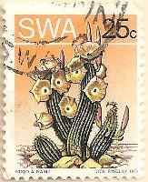 SWA-253-AN156