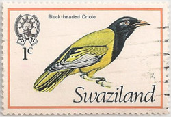 Swaziland-236-AE9