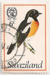Swaziland-241-AE9