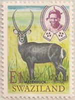 Swaziland 219 i71
