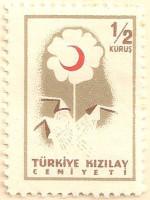 Turkey-T1651-AN208