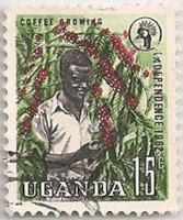 Uganda-101.1-AF22