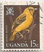 Uganda-115-AF22