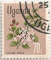 Uganda-139-AF22