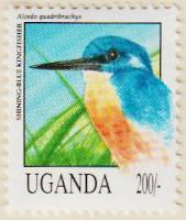 Uganda-1151-AN268