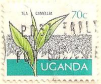 Uganda-154-AK46