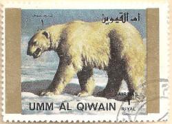 Umm-al-Qiwain-Animals-4-AN210