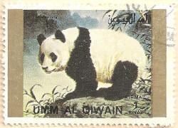 Umm-al-Qiwain-Animals-5-AN210