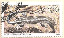 Venda-125-AN234