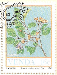 Venda-163-AN232