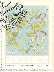 Venda-165-AN232