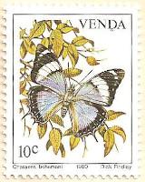 Venda-35-AN235
