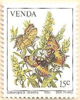 Venda-36-AN235
