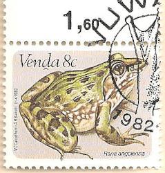 Venda-67-AN232