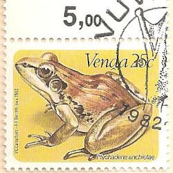 Venda-70-AN232