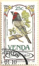 Venda-104-AN237