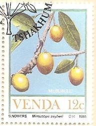 Venda-111-AN232