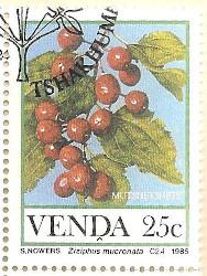 Venda-112-AN232