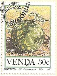 Venda-113-AN232