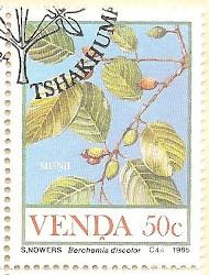 Venda-114-AN232
