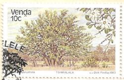 Venda-79-AN236