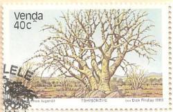 Venda-82-AN236
