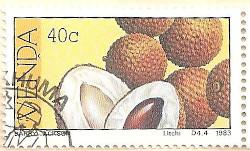 Venda-86-AN228