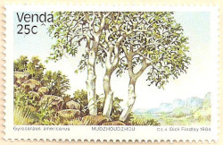 Venda-97-AN237