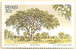 Venda-98-AN237