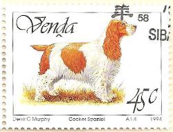 Venda-264-AN235