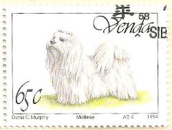 Venda-265-AN235