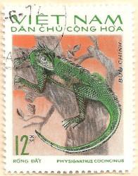 Vietnam-N429-AN239